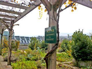 Boulogne novembre 2008 jardins familiaux